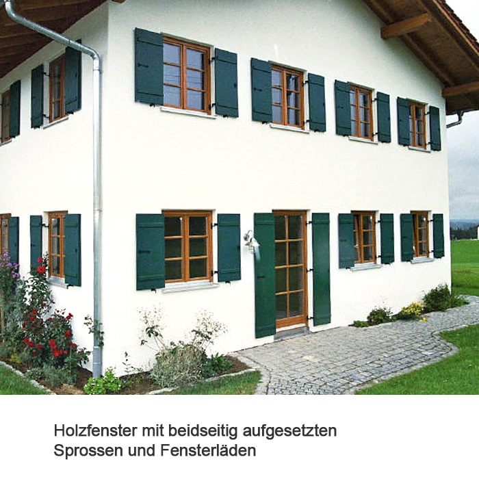 Fenster 9